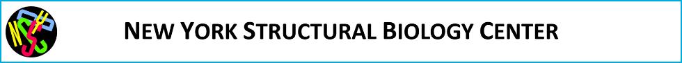 NYSBC Logo